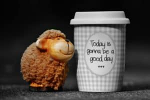 That cup is right! The little lamb surely believes it!