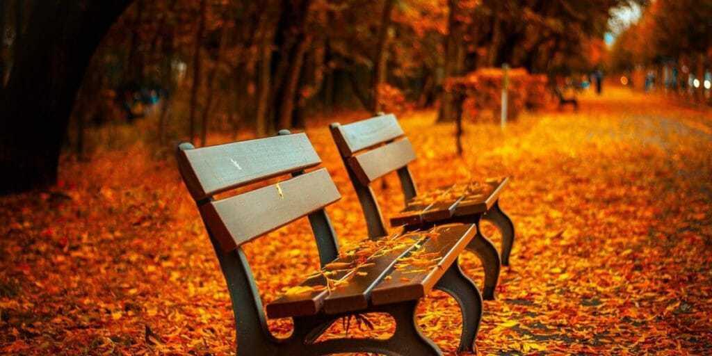 Add more fall