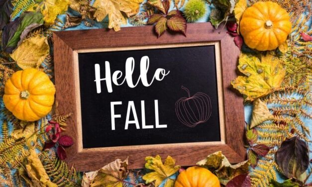 Fall Printables For Free!
